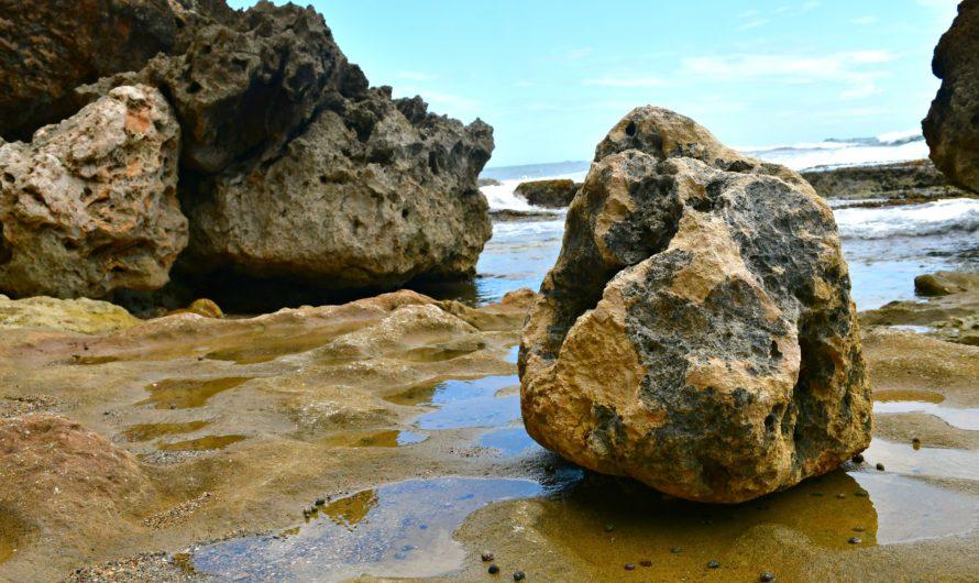 """Tener claridad con """"tus big rocks"""" lo cambia todo"""